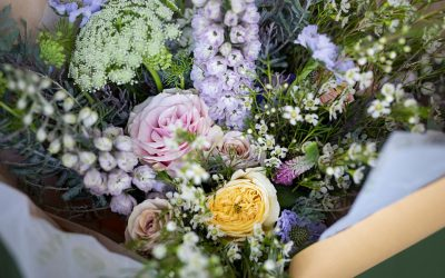 We're Introducing a New Way to Experience Flowers